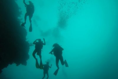 This memory is about my friend Emily Pocock who punctured her ear drums the first time that she went deep sea scuba diving in Roatan, Honduras.
